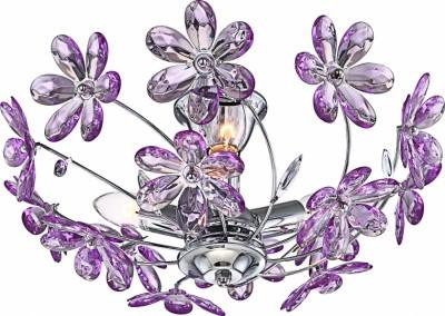 Aplica Purple 5142